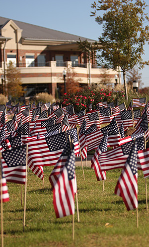 Veterans Day flags in Bentley Gardens with MCC